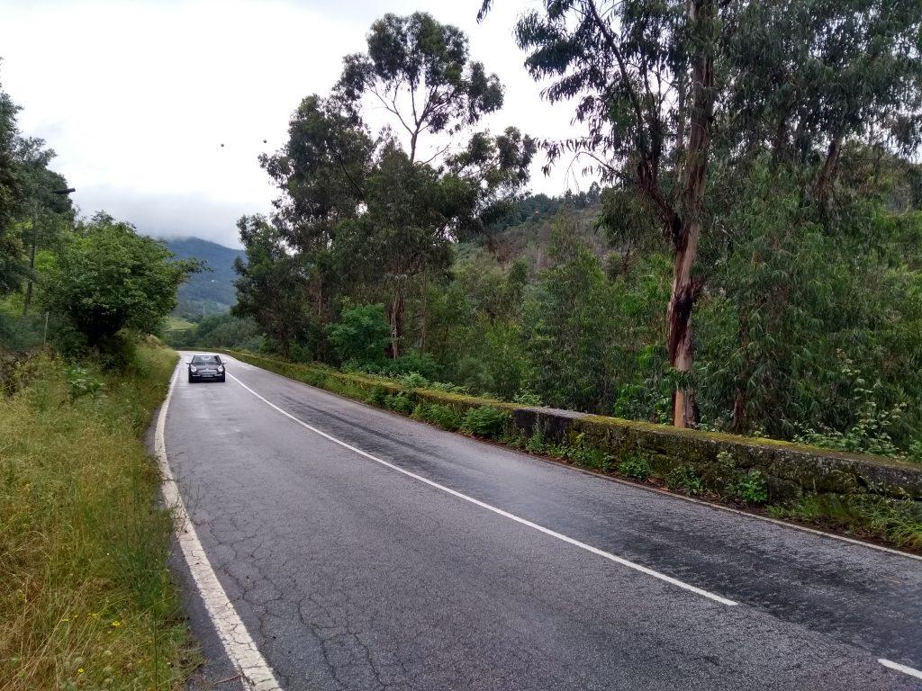 Portuguese roads