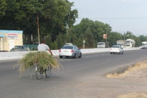 A laden Uzbek cyclist on the first day out of Tashkent.  I'm glad my panniers were lighter than his load!